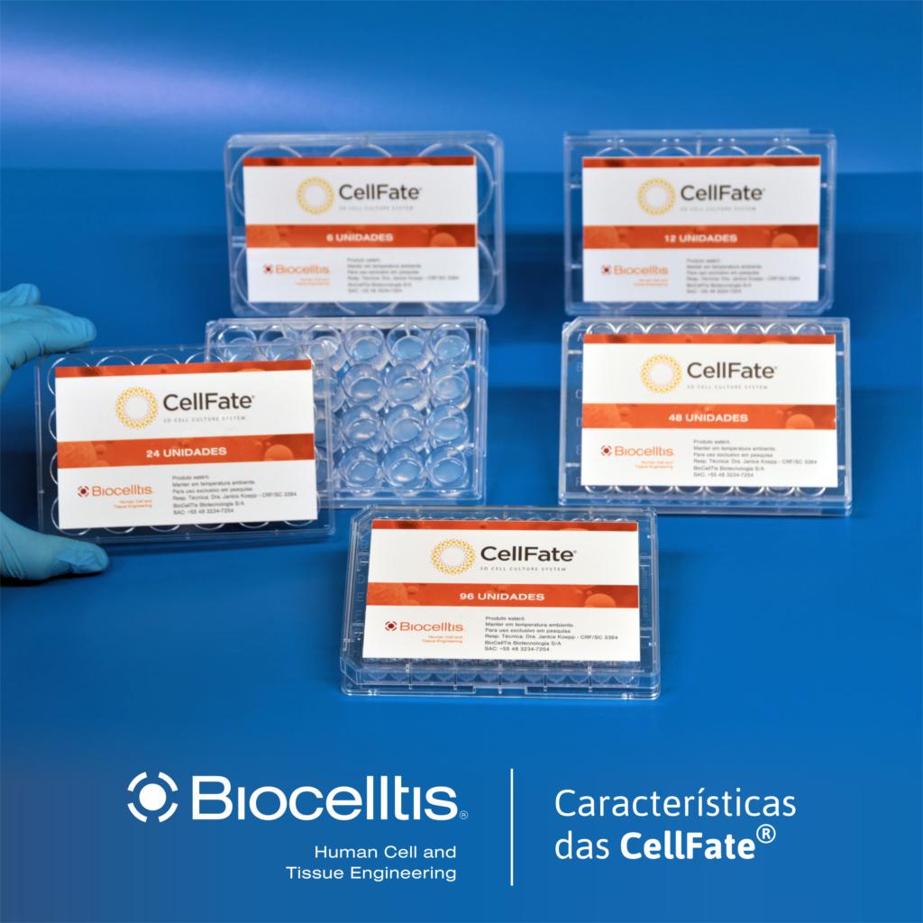 cellfate2